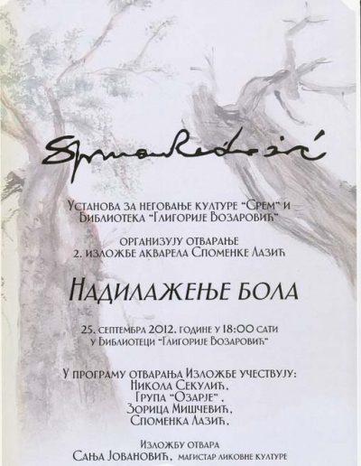 biblioteka_gligorije_vozarovic_prvi_direktorijum (137)