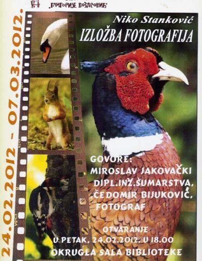 biblioteka_gligorije_vozarovic_prvi_direktorijum (139)