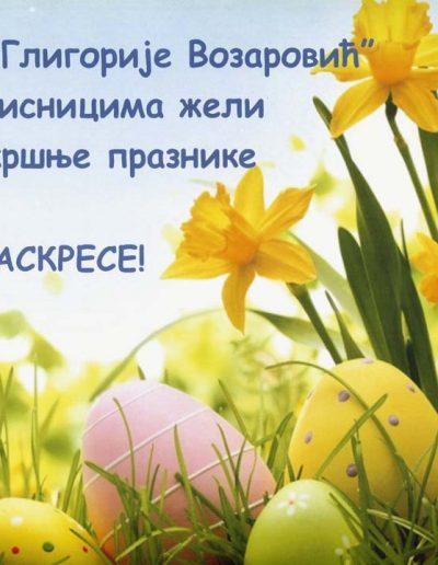 biblioteka_gligorije_vozarovic_prvi_direktorijum (159)
