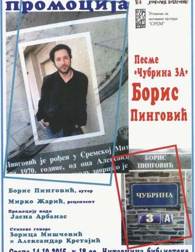 biblioteka_gligorije_vozarovic_prvi_direktorijum (31)