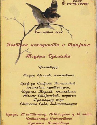 biblioteka_gligorije_vozarovic_prvi_direktorijum (54)