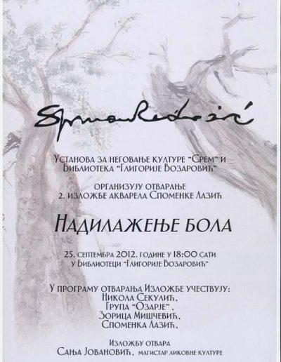 biblioteka_gligorije_vozarovic_prvi_direktorijum (83)